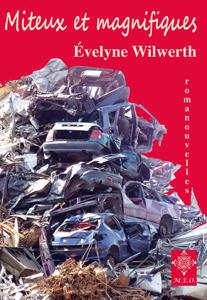 Un roman en nouvelles. Une gerbe d'étincelles… narratives