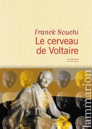 Voltaire, reviens parmi nous!