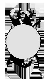 espace scarabeus _logo