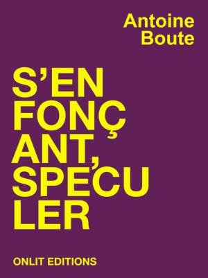 Antoine Boute S'enfonçant, spéculer une performance littéraire