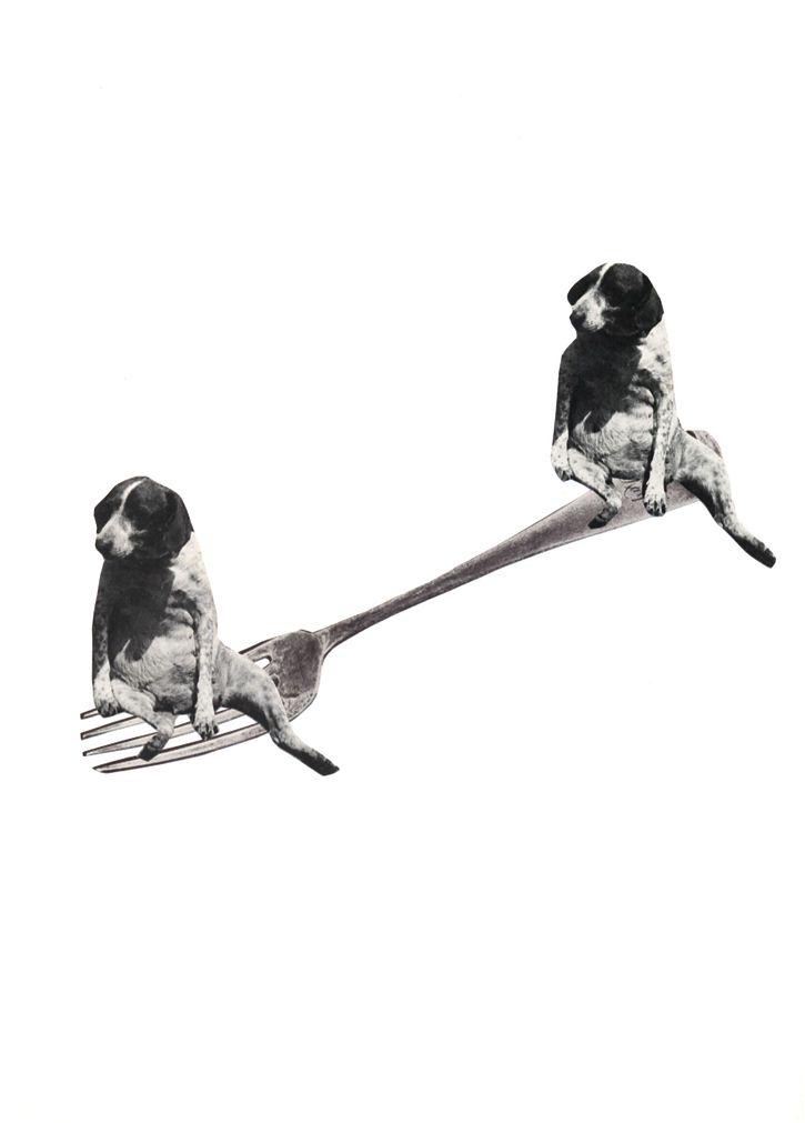 Fourchette-chien_