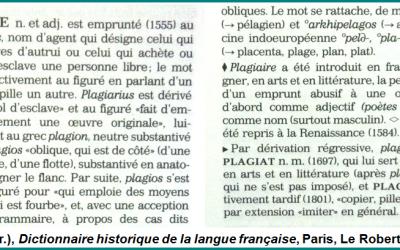 Plagiat-RobertHistorique