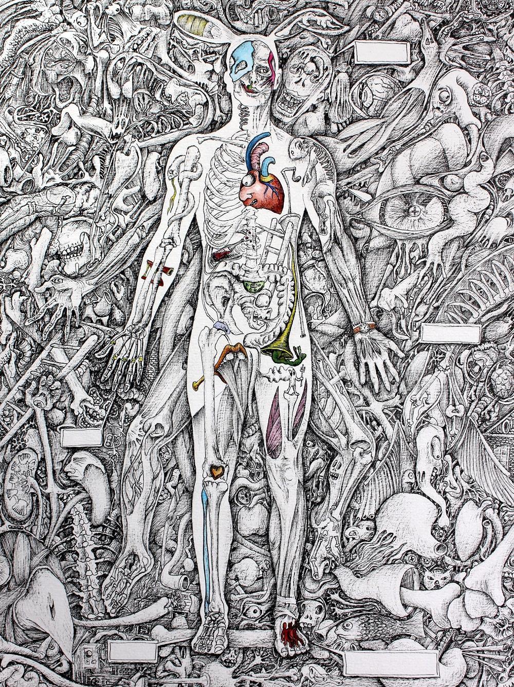 aneatomique-24-x-32-cm-stylo-aquarellepapier