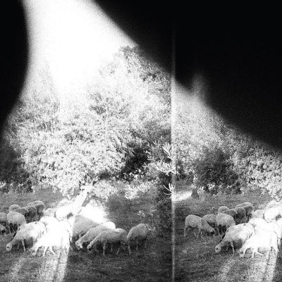 Godspeed You! Black Emperor Asunder, Sweet And Other Distress