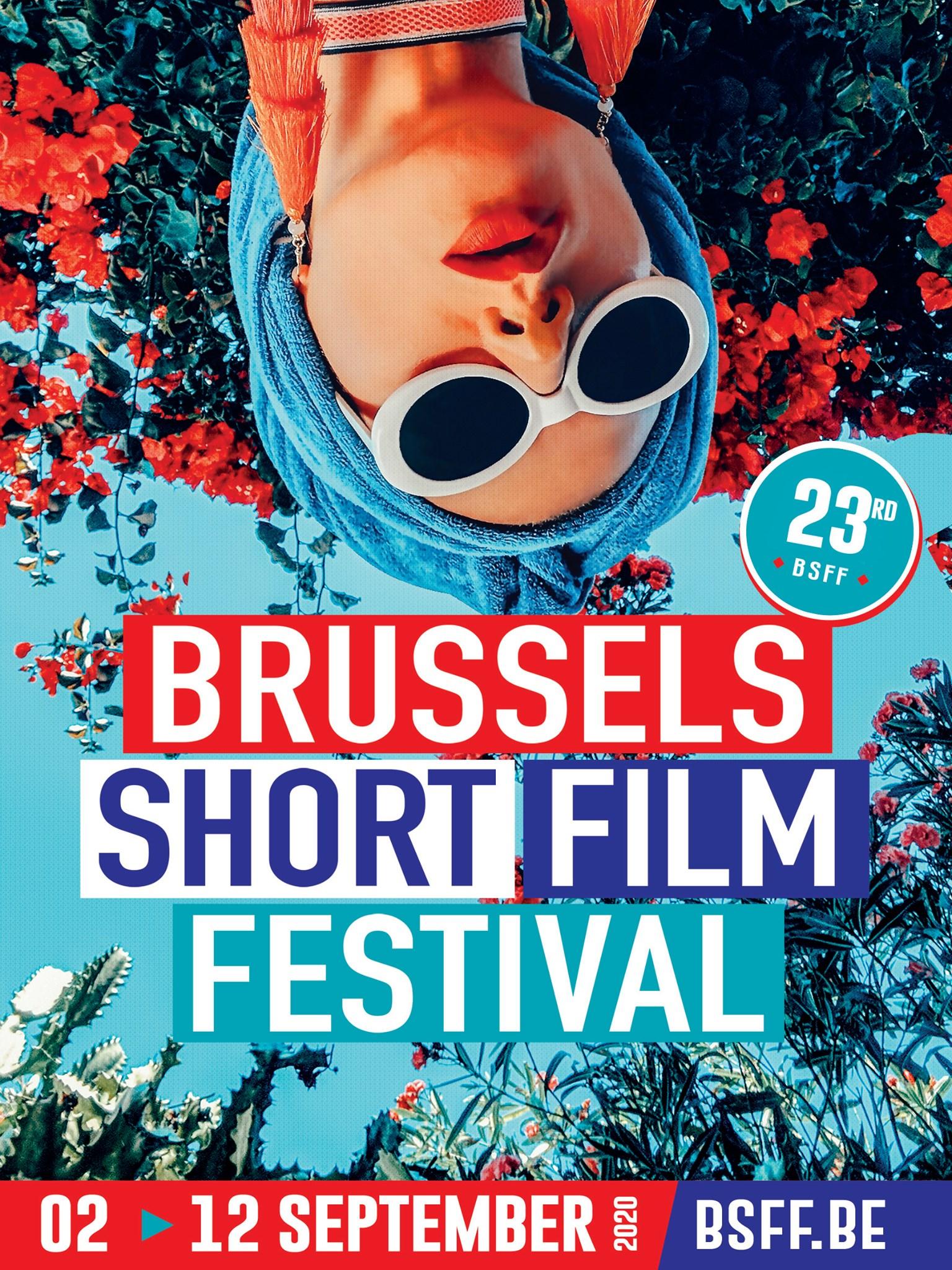 Palmarès national du Brussels Short Film Festival 2020 Au pays des chats de Schrödinger