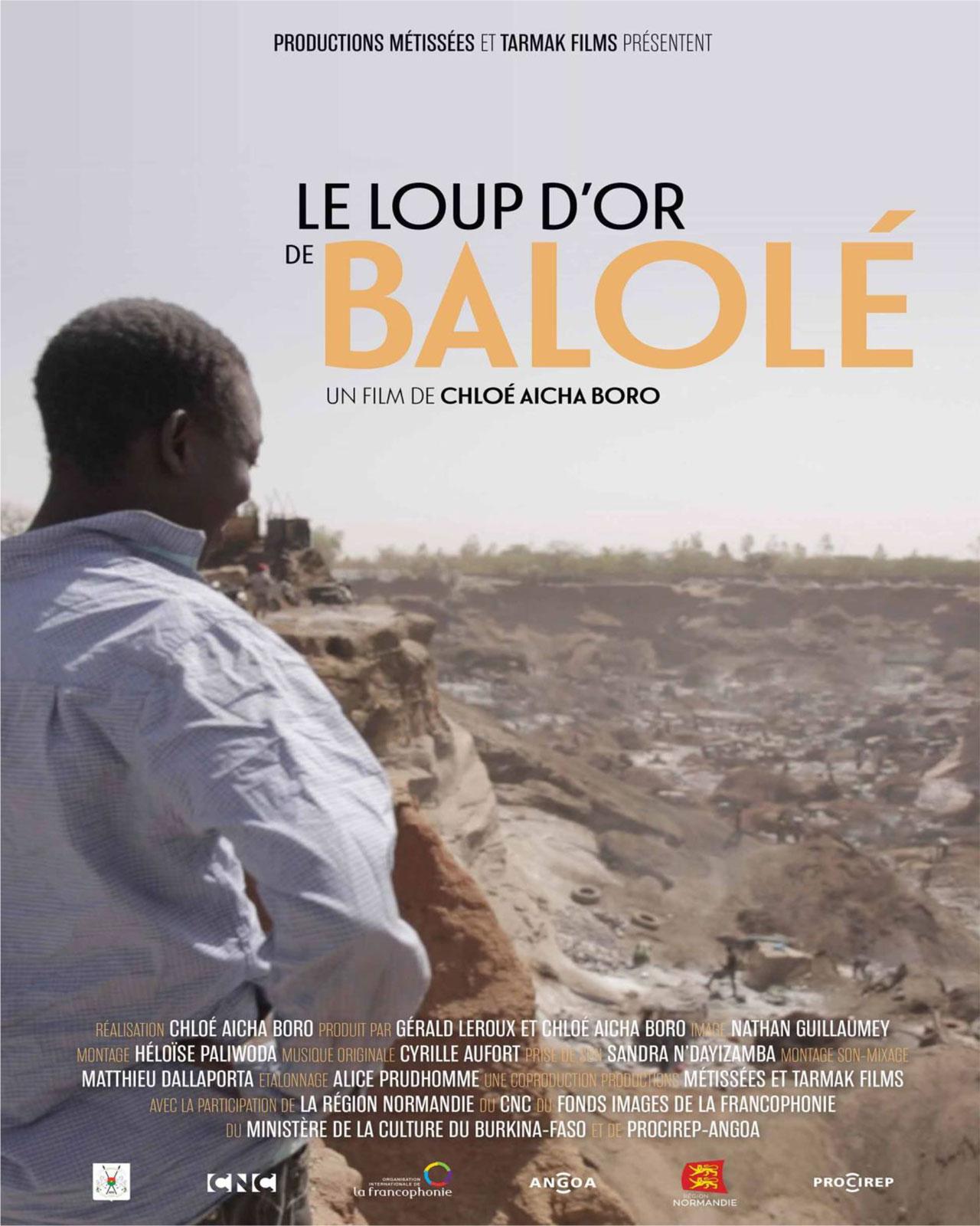 Pas d'Or pour Kalsaka et Le Loup d'Or de Balolé Fracturations cinématographiques